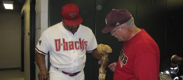 Examining the bone