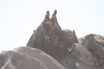 Two men riding a camel